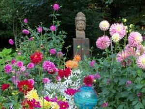 MBV-Zen-Garden-Resize